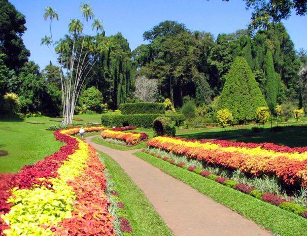 botanical garden peradeniya